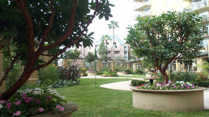 Landscape Design - SoCal Landscape Contracting, Inc.